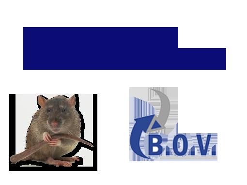Logo bovonline